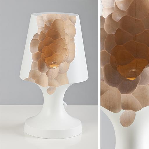 LAMP1-web-L2
